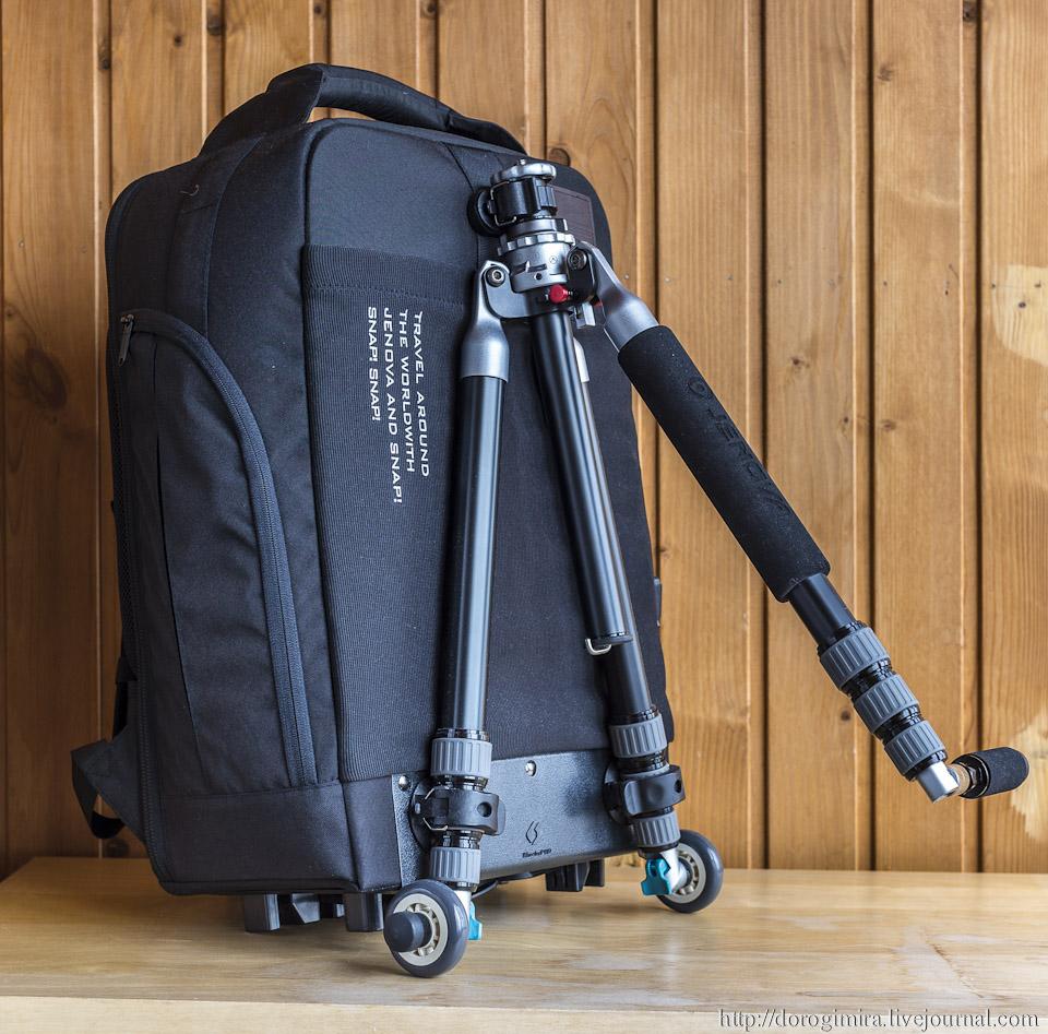 анотомический рюкзак для первоклассника