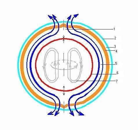 внешнего магнитного поля;