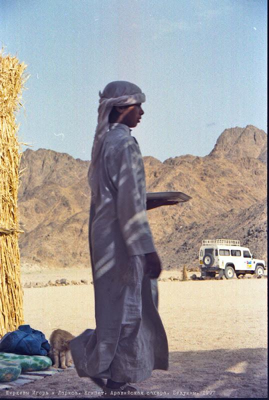 Сексуальные обычаи бедуинов