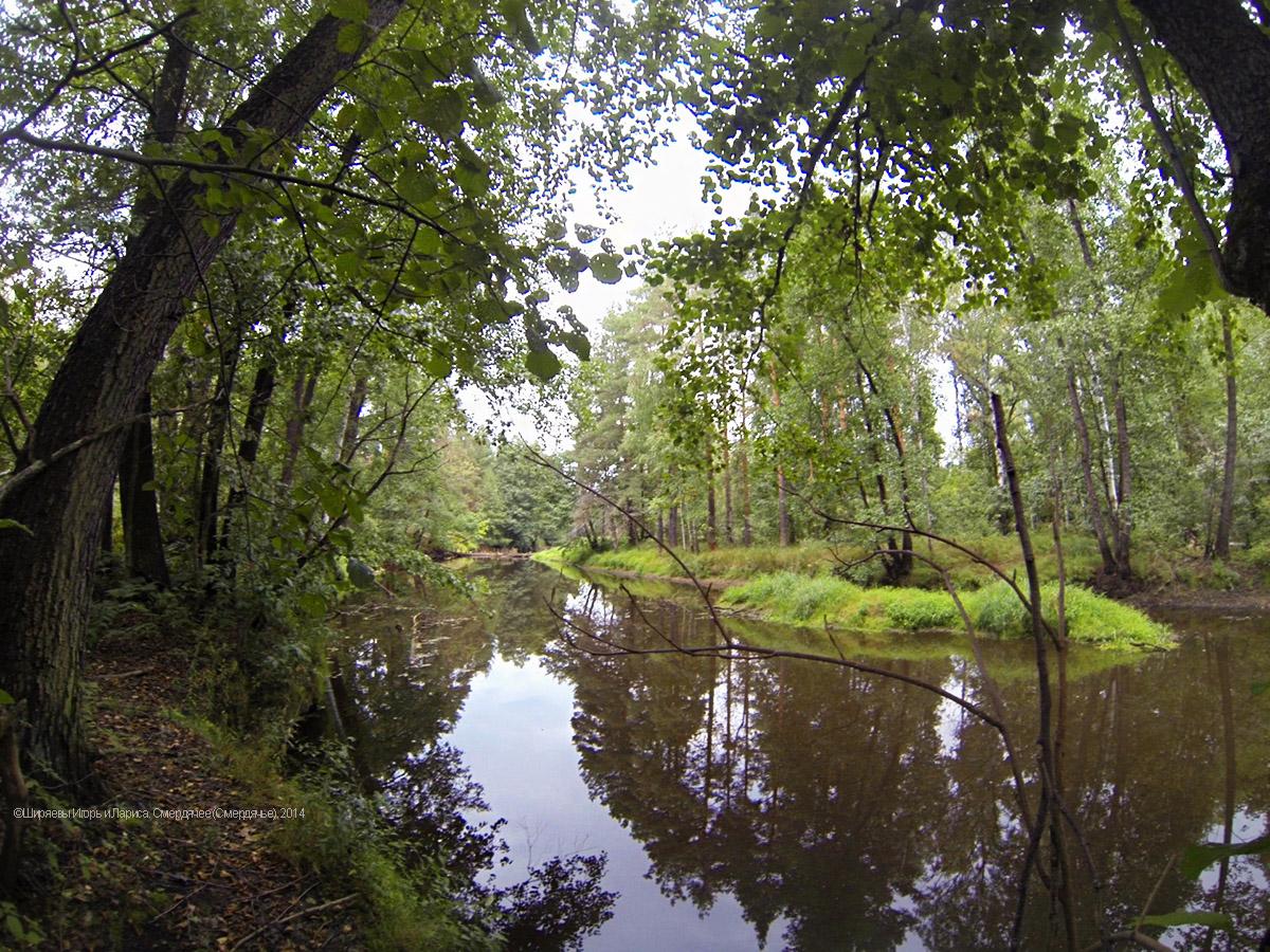 река Воймега