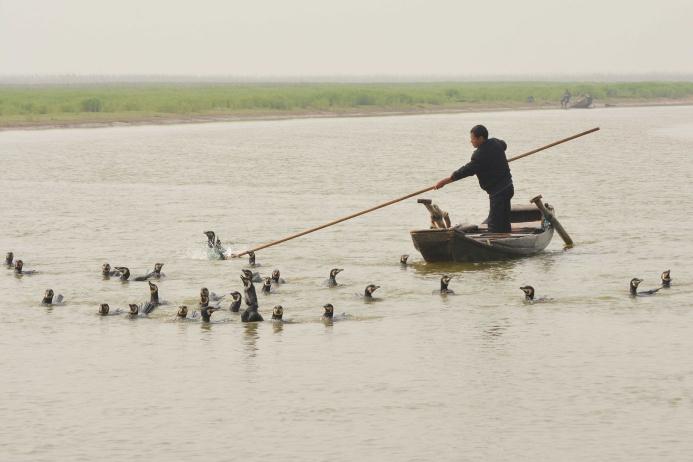 гибкий прут рыболова