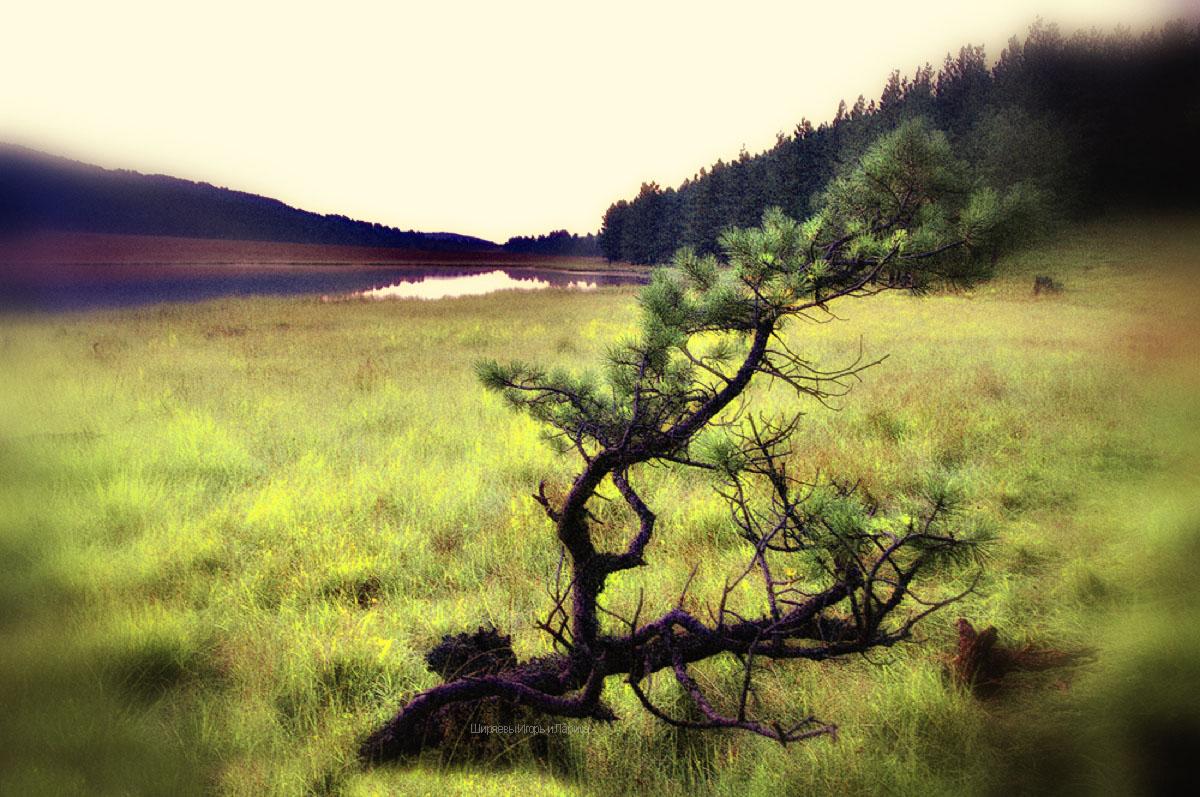Секс природа озеро 22 фотография