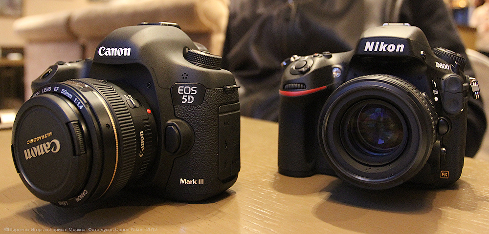 Canon EOS 5D Mark III vs Nikon D800