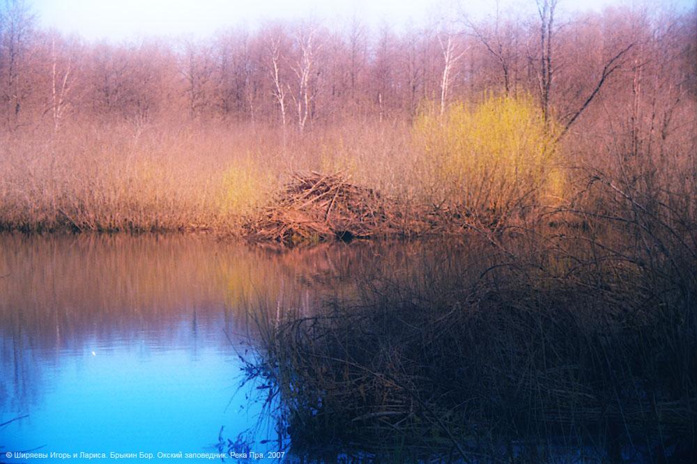 Река Пра.